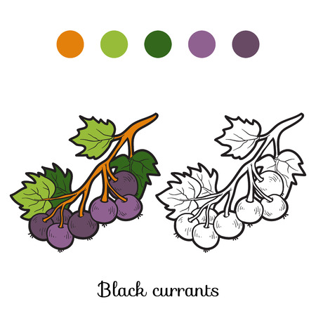 currants: Coloring book for children: fruits and vegetables (black currants)