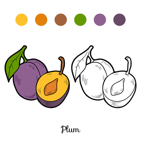 coloration: Coloring book for children: fruits and vegetables (plum)