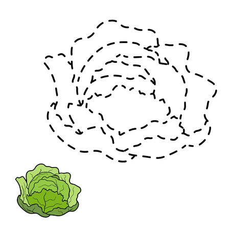cabbage: Game or children: Connect the dots (cabbage) Illustration