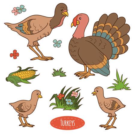 gobbler: Color set of cute farm birds and objects, vector family turkeys Illustration
