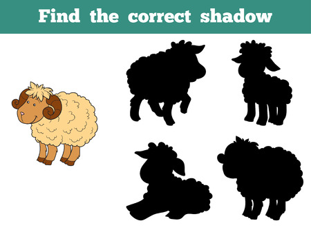 wool sheep: Game for children: Find the correct shadow (sheep family)