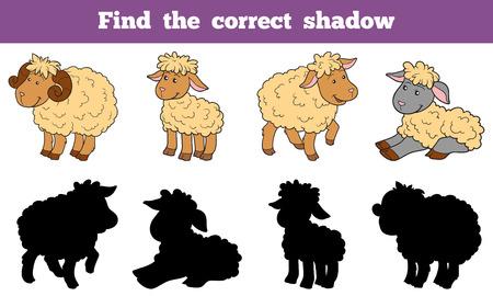 pecora: Gioco per i bambini: trovare l'ombra corretta (famiglia pecore) Vettoriali
