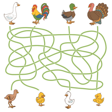 Maze game for children: help the young find their parents (farm birds: duck, goose, turkey, chicken)