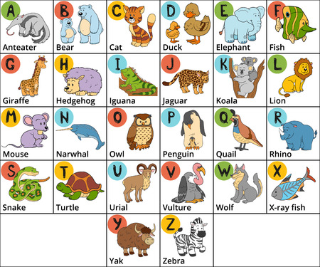 Vector color zoo alphabet with cute animals on white background. Square card with animals and letters A-Z Vettoriali