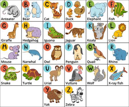 Vector kleur dierentuin alfabet met schattige dieren op een witte achtergrond. Vierkante kaart met dieren en letters AZ