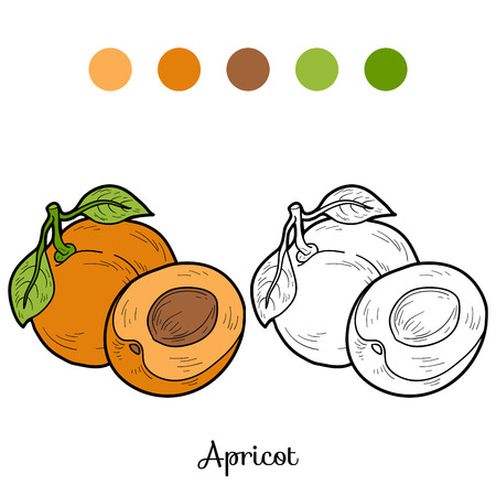apricot: Coloring book: fruits and vegetables (apricot)
