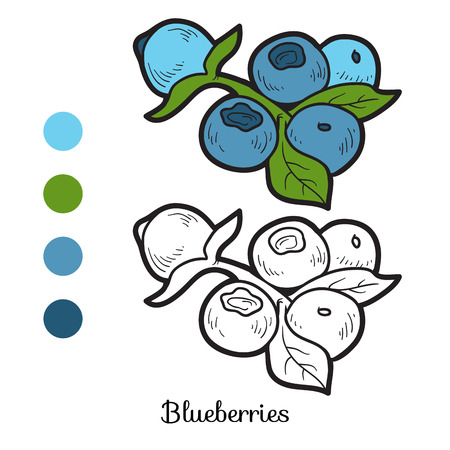 9,620 Blueberry Cliparts, Stock Vector And Royalty Free Blueberry ...