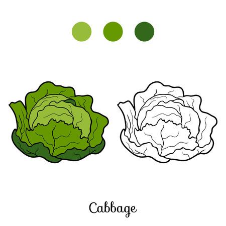 repollo: Libro para colorear para niños: frutas y verduras (col)