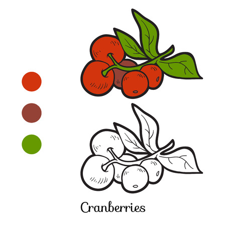 cranberries: Coloring book for children: fruits and vegetables (cranberries)