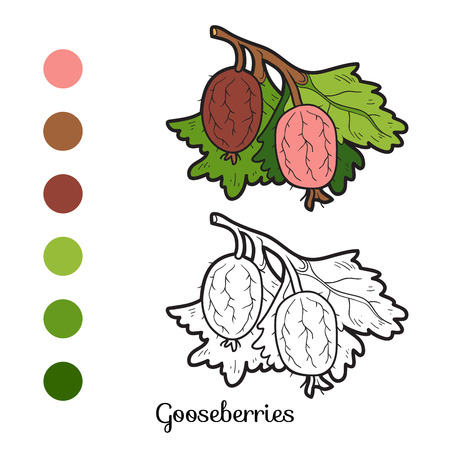 prickly fruit: Coloring book for children: fruits and vegetables (gooseberries)