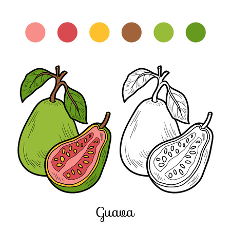 children book: Coloring book for children: fruits and vegetables (guava)