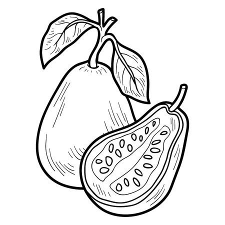 guayaba: Libro para colorear para niños: frutas y verduras (guayaba)