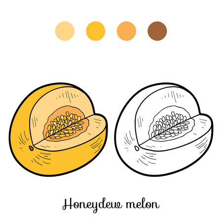 honeydew: Coloring book for children: fruits and vegetables (honeydew melon)