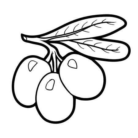 Coloring Book For Children Fruits And Vegetables Olives Vector
