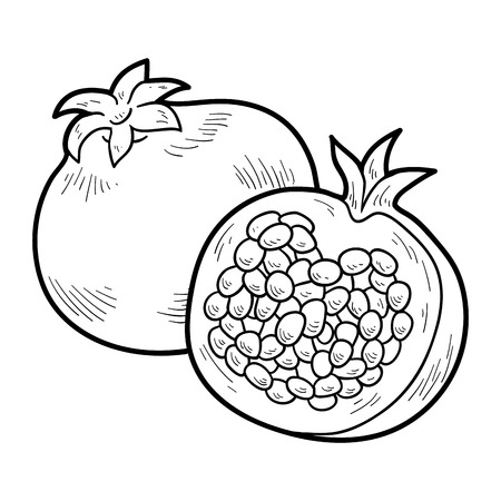 vegetables on white: Coloring book for children: fruits and vegetables (pomegranate)
