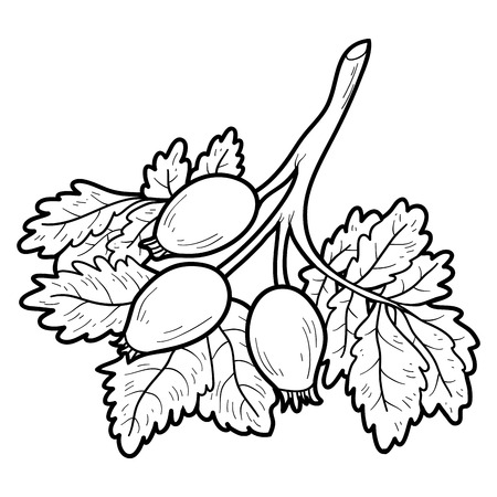 Libro Para Colorear Para Niños: Frutas Y Verduras (apio ...