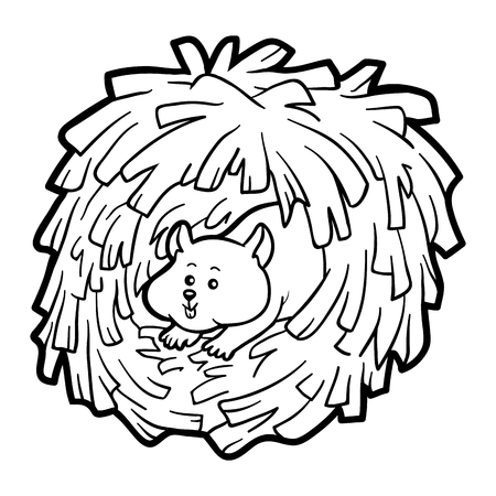 children studying: Coloring book for children: hamster