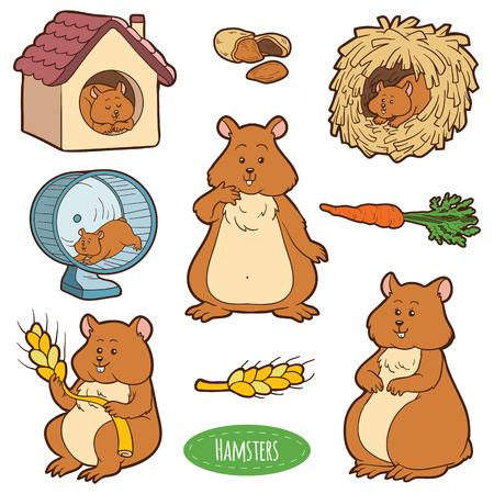 zanahoria caricatura: Colorido conjunto de animales y objetos dom�sticos lindo, pegatinas de vector con la familia de los h�msters y objetos