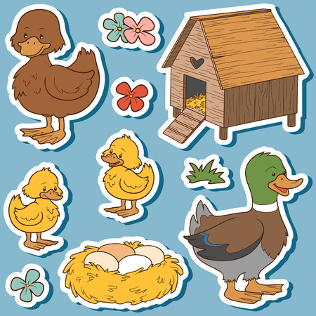 children pond: Color set of cute farm animals and objects, vector family duck and objects Illustration