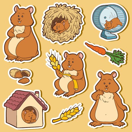 hamsters: Colorful set of cute domestic animals and objects, vector stickers with family of hamsters and objects