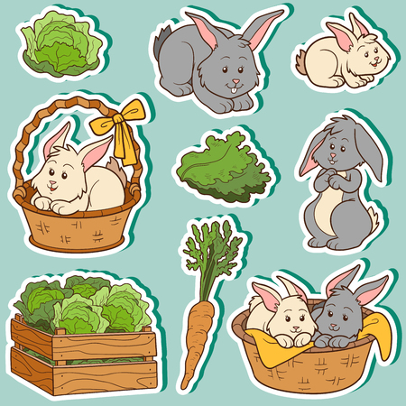 farm animals: Color set of cute domestic animals and objects, vector family rabbits and objects