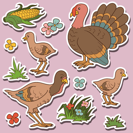 farm animals: Farm animals set, vector stickers with turkey family and farm items Illustration