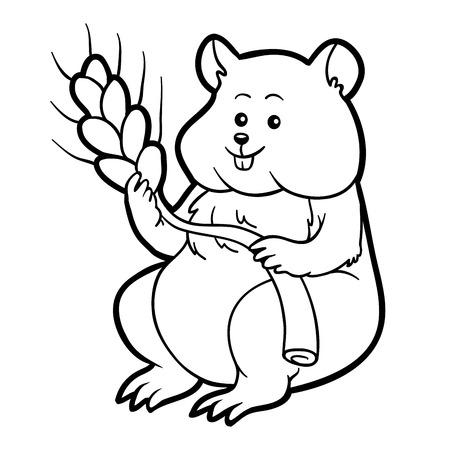 Libro Para Colorear Para Niños: Hamster Ilustraciones Vectoriales ...