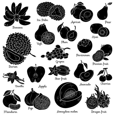 cherries isolated: Shadow set with tropical fruits, vector cartoon collection for children