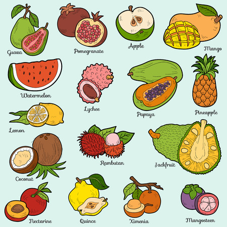 Color set with tropical fruits, vector cartoon stickers for children 版權商用圖片 - 47452788