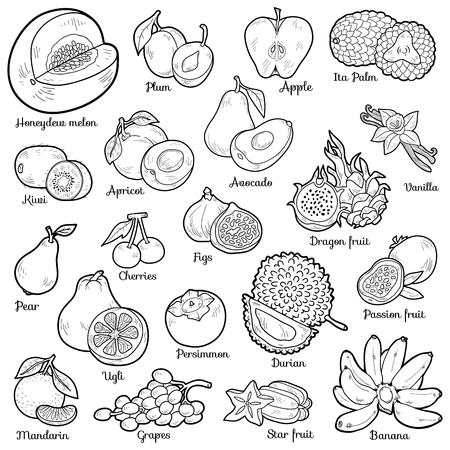 Kleurloos set met tropische vruchten, vector cartoon stickers voor kinderen