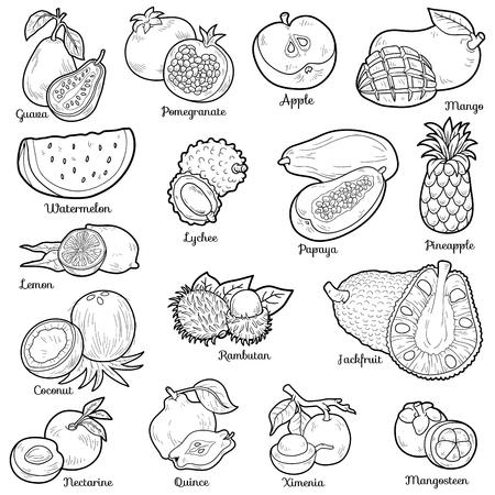 frutas tropicales: Conjunto incoloro con frutas tropicales, pegatinas de dibujos animados de vectores para niños Vectores