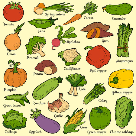 Color set with vegetables, vector cartoon stickers for children