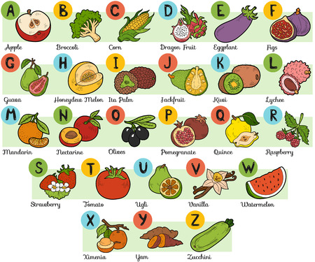 Color alphabet for children: fruits and vegetables (A-Z)  イラスト・ベクター素材