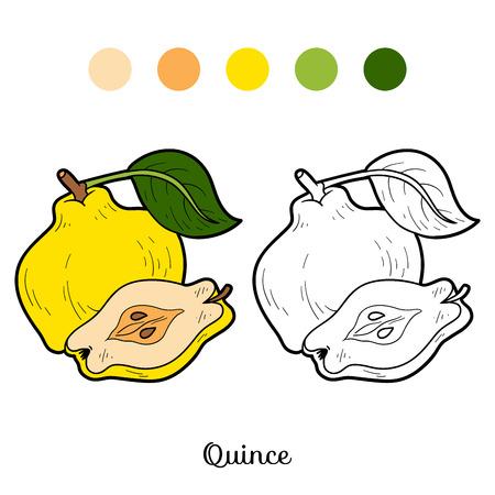 membrillo: Libro para colorear para niños: frutas y verduras (membrillo)