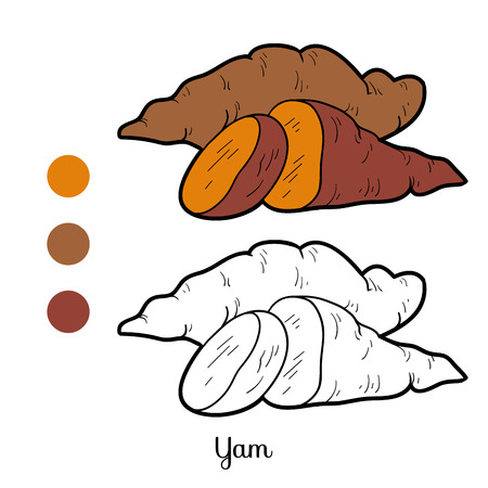Coloring book, education game for children: fruits and vegetables (yam)