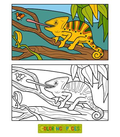 Páginas Para Colorear. Animales Salvajes. Pequeño Camaleón Lindo Se ...