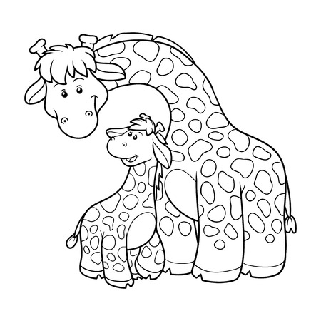 young animal: Coloring book for children, education game (two giraffes) Illustration