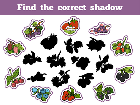 brain game: Find the correct shadow, education game for children (berry and fruits) Illustration