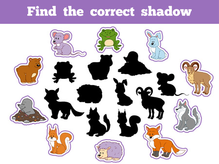 lapin silhouette: Find the correct shadow, game for children (forest animals)