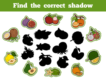 brain game: Find the correct shadow, education game for children (fruits) Illustration