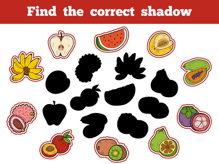 activity cartoon: Find the correct shadow, education game for children (fruits) Illustration