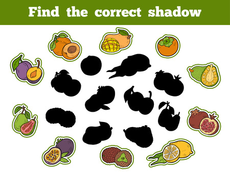 correct: Find the correct shadow, education game for children (fruits) Illustration