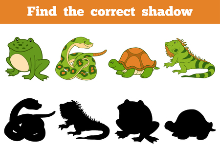iguana: Find the correct shadow, education game for children (snake, turtle, iguana, frog)