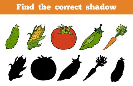 elote caricatura: Encuentra la sombra correcta, juego educativo para niños (verduras)