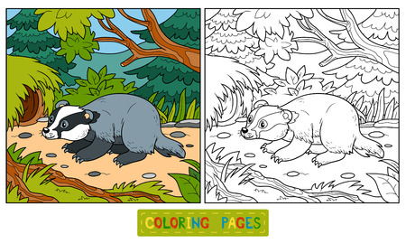 cute animals: Coloring book for children (badger and background) Illustration