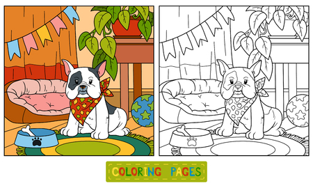 hound dog: Coloring book, education game for children (french bulldog and background)