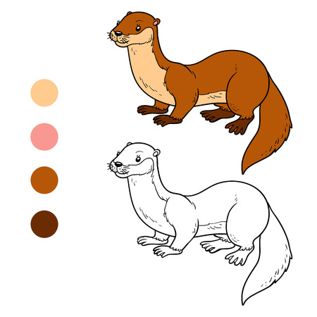 stoat: Coloring book for children (otter)
