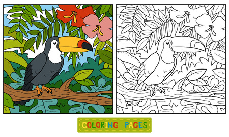cartoon parrot: Coloring book, education game for children (toucan and background) Illustration