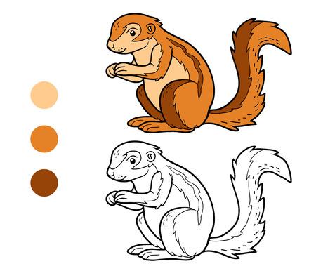 animales del bosque: Coloring book for children (xerus)