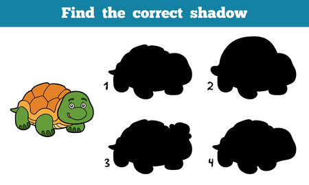 children turtle: Find the correct shadow, education game for children (turtle) Illustration